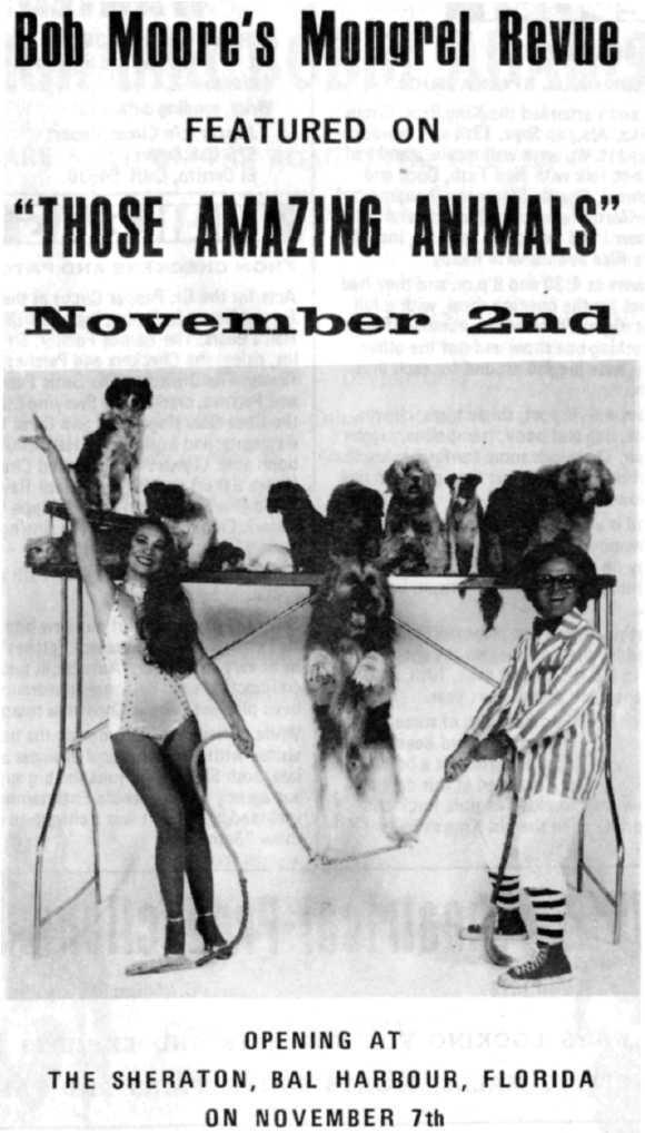 Bob Moore's Mongrel Revue FEATURED ON THOSE AMAZIN6 ANIMALS
