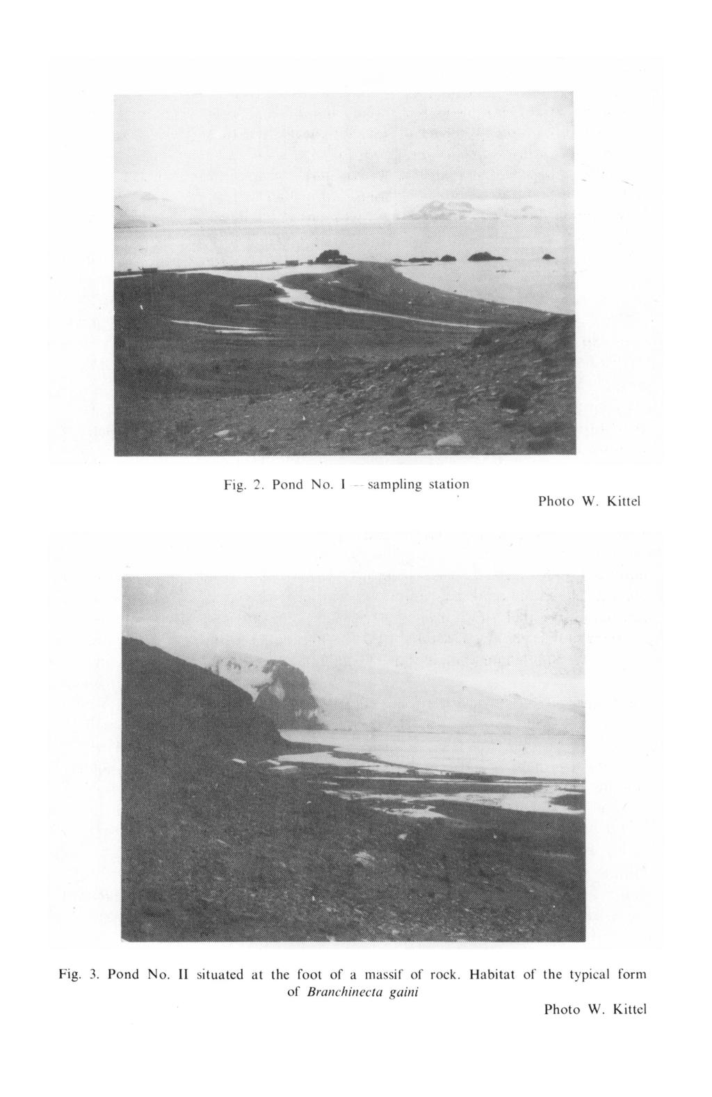Fig. 2. Pond No. 1 sampling station Photo W. Kittel Fig. 3. Pond No. II situated at the foot of a massif of rock.