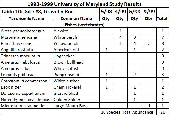 For site #8, there was only 1 adult River Herring caught in April 1999