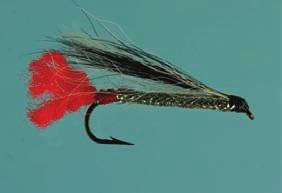STREAMERS BLACK NOSE DACE