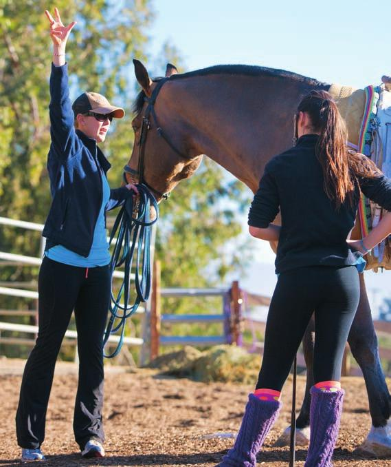FEATURE Coaching Coaches: Using Self-Reflection to Bec Extending the Ladde Thirty years ago, when I was fifteen years old, I became a vaulting coach.