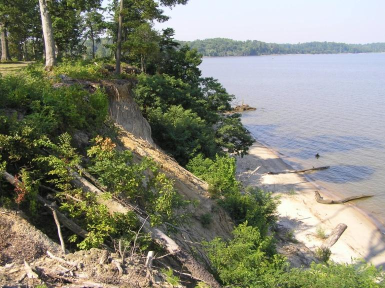 Bank erosion high; forested shoreline; bank height > 30 ft It is assumed that a forested bank at this height is not providing a significant water quality benefit because the groundwater comes out of