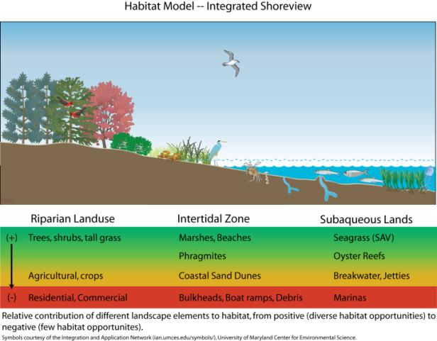 The best decisions regarding the management of coastal resources are made using integrated coastal zone management.