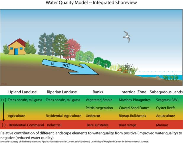 Integrated management adapts project design to local conditions in order to minimize cumulative adverse impacts to ecological services provided by the tidal shoreline system.