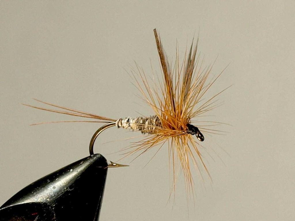 Hansen s Drake is another of Ann s creations most probably developed in the late 1940 s. The fly was named after Dad Hansen. Hansen was a loyal customer and friend of the Schweigerts.