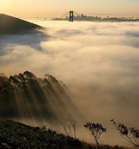 Figure 12.21b Fog over San Francisco Bay.