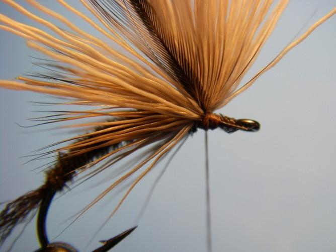 Prepare a hackle by trimming a few barbs close to