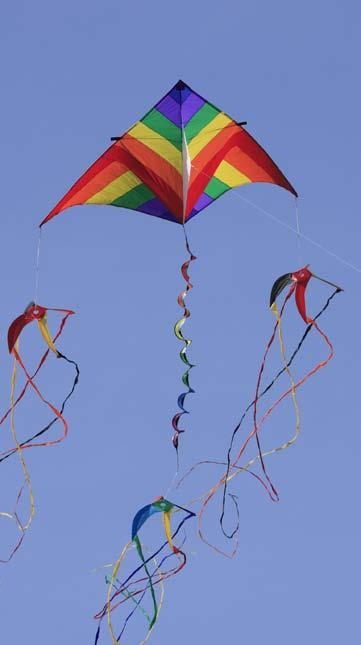 9 Different shapes of kites fly in different ways.