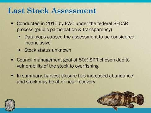 The last stock assessment of goliath grouper was completed in 2010 through the regional/federal process known as SEDAR (Southeast Data Assessment and Review) and included data through 2009.