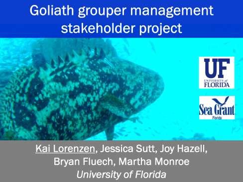 Scientific uncertainty is only one aspect of the goliath grouper management controversy.