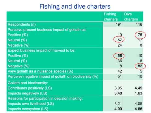Dive charter businesses viewed impacts of the goliath situation as predominantly positive (75%), with only 8% perceiving a negative impact.
