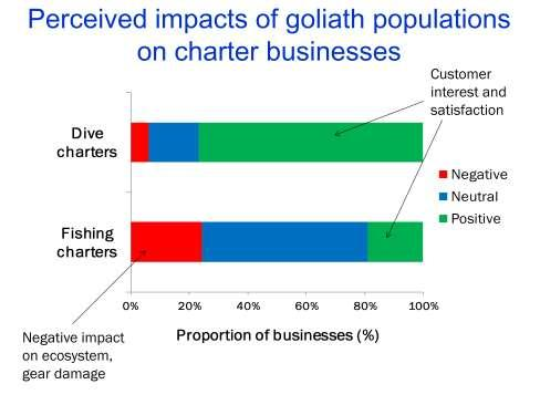 As previously stated, dive charter businesses viewed impacts of the goliath situation as predominantly positive.