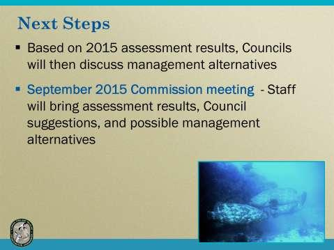 Based on the assessment results and the recommendations for management from the Council committee, the Councils will make decisions about how manage goliath grouper in the