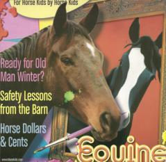 2004 Issues  6 Gypsy Vanners,
