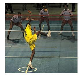 5 Figure 1: The Tekong performing the service during a match. (Source: Schnell, F. (2008)) 2.3 Court Area of 13.4 m x 6.