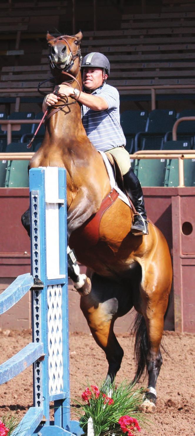 When Horses Behave Badly Unwanted behaviour may be caused by a poorly fitting saddle By Jochen Schleese CMS, CSFT, CSE There have been an abundance of articles discussing such problems as how to slow