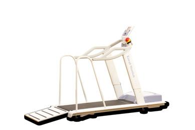 Step-up height: 12,5 cm ( Standard and Plus type) Weight of treadmill: 140 kg ( Standard type) 155 kg ( Plus type) Max.