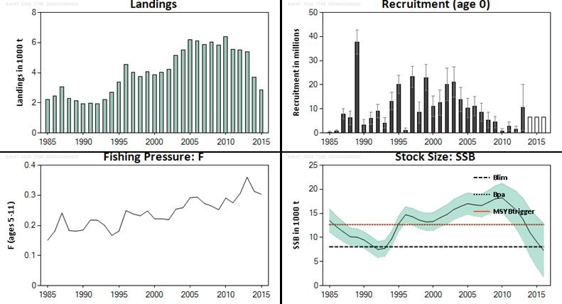 ICES Advice on fishing opportunities, catch, and effort Celtic Seas and Greater North Sea ecoregions Published 30 June 2016 5.3.57 Sea bass (Dicentrarchus labrax) in divisions 4.b c, 7.a, and 7.