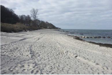 For this analysis only the first beach nourishment in March 21 is studied. The sediment used for to conduct the beach nourishments are dredged accumulated sediment west of Hornbæk Harbor.