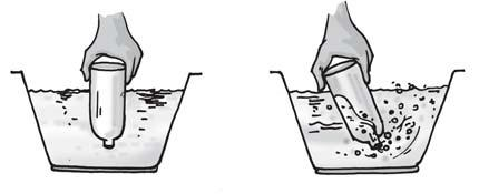 Fig. 15.4 Experiments with an empty bottle. Now, dip the open mouth of the bottle into the bucket filled with water as shown in Fig. 15.4. Observe the bottle. Does water enter the bottle?
