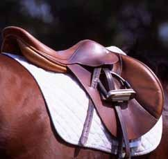 There are various types of show-ringacceptable safety stirrups designed to release a trapped foot: Peacock stirrups replace the outside branch with a heavy rubber band, and Australian-pattern or