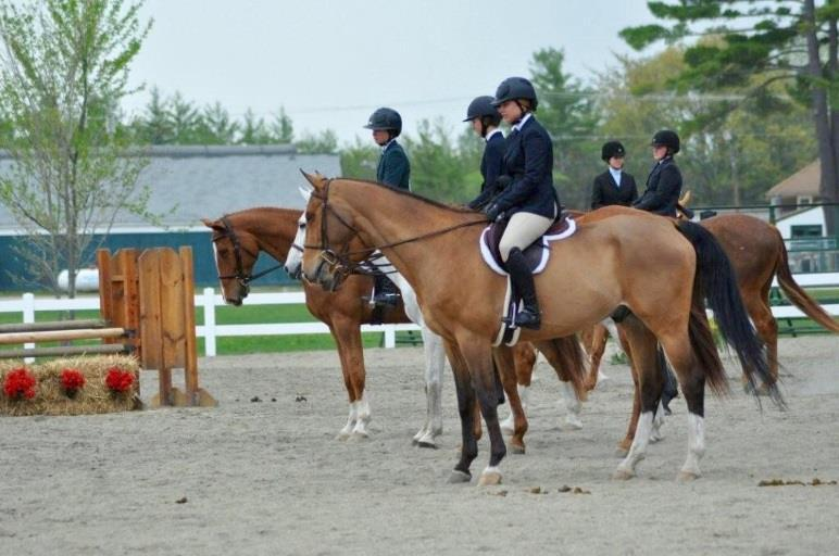3 Open Hunter Open to any NHHJA member in good standing who has competed in any Hunter division at a 2015 NHHJA show. Riders to show over a minimum of eight (8) fences. Fence heights not to exceed 3.