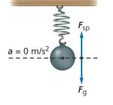 14.1 Periodic Motion Potential Energy When an object hangs on a spring, the spring stretches until its upward
