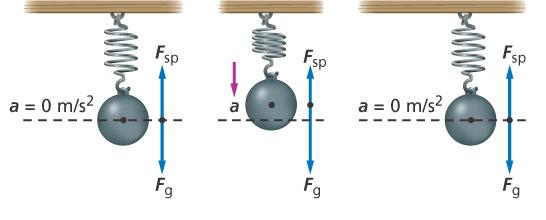 14.1 Periodic Motion Potential Energy When the net force is in the direction opposite the displacement of the object and is directly proportional