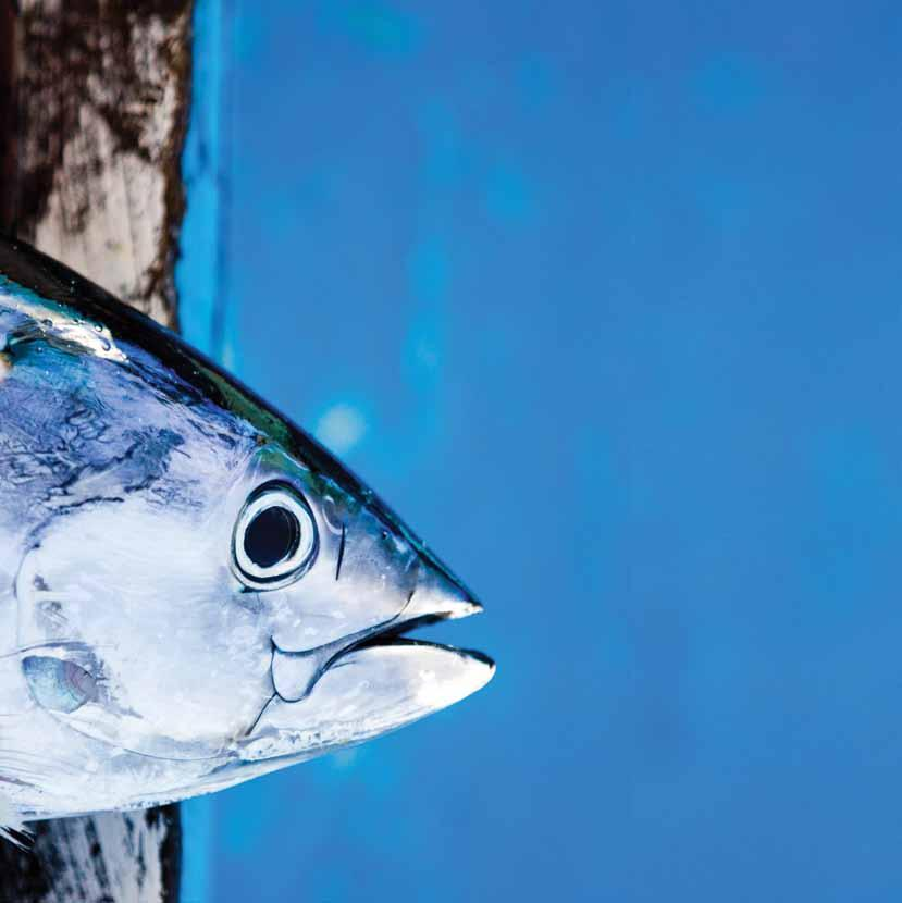 Changing business Responding to the changes being advocated by Pacific Island governments and fishermen, and to expanding global consumer demand for sustainable tuna products, many major players in