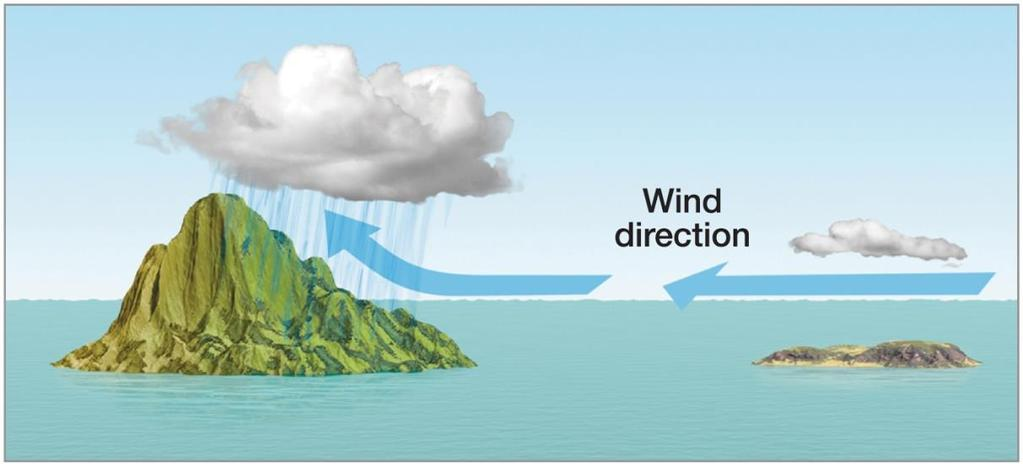 The General Circulation of the Atmosphere Components of the general circulation (cont.) Trade winds (cont.
