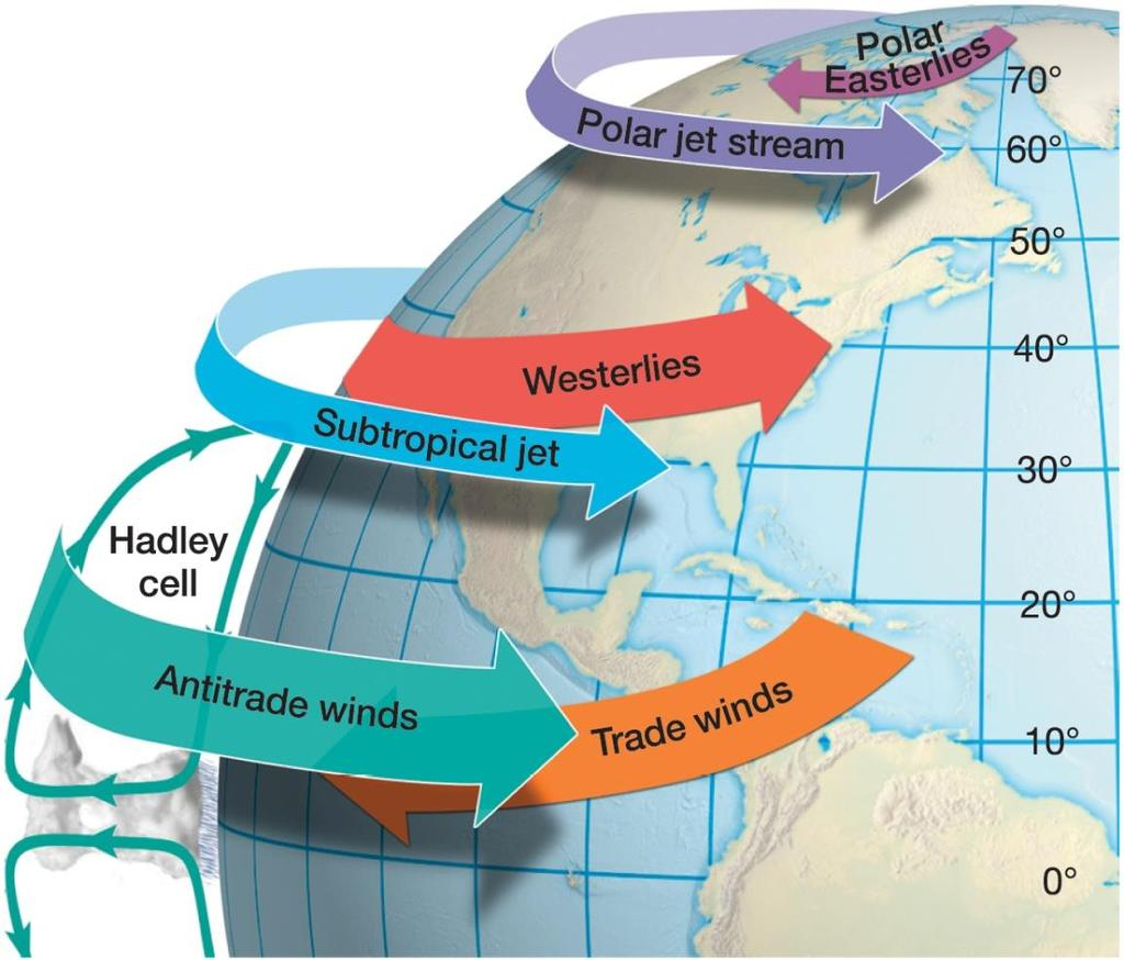 The General Circulation of the Atmosphere Vertical wind patterns of the general