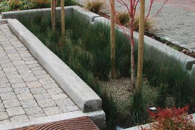 SvR Design Company Infiltration stormwater