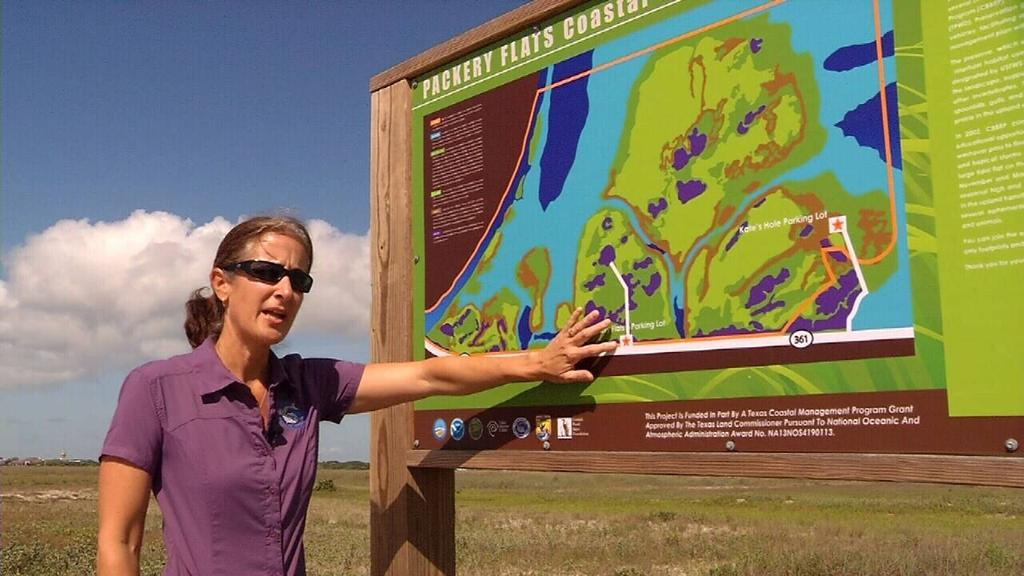 Posted: Jun 22, 2016 1:30 PM CDT Updated: Jun 22, 2016 5:43 PM CDT Wildlife sanctuary gets big grant to protect habitat By Samantha Miles CORPUS CHRISTI - Driving down Highway 361, you may think the