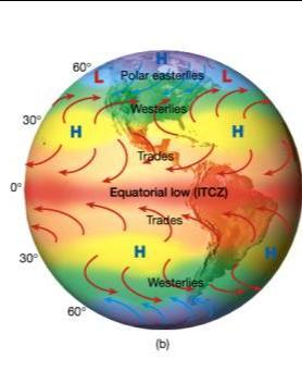 The most permanent belts are found over the oceans World pressure belts Pressure Gradient Force and Coriolis Force in Creating a Tri-Cellular Circulation of the Hadley, Ferrel and Polar Cells and the