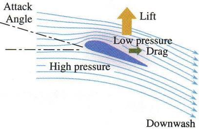 o Lift: Bernoulli s Principle Due to the differences in pressure.