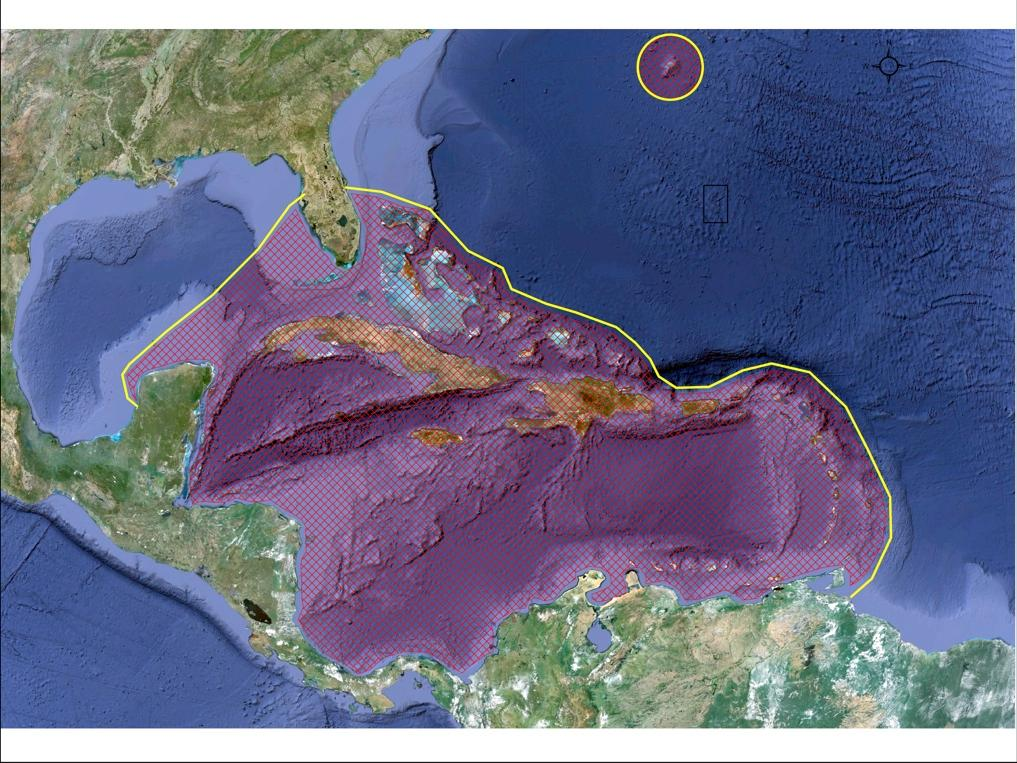 1.c. Range wide distribution The Nassau grouper s confirmed distribution currently includes Bermuda and Florida (USA), throughout the Bahamas and Caribbean Sea (Fig.