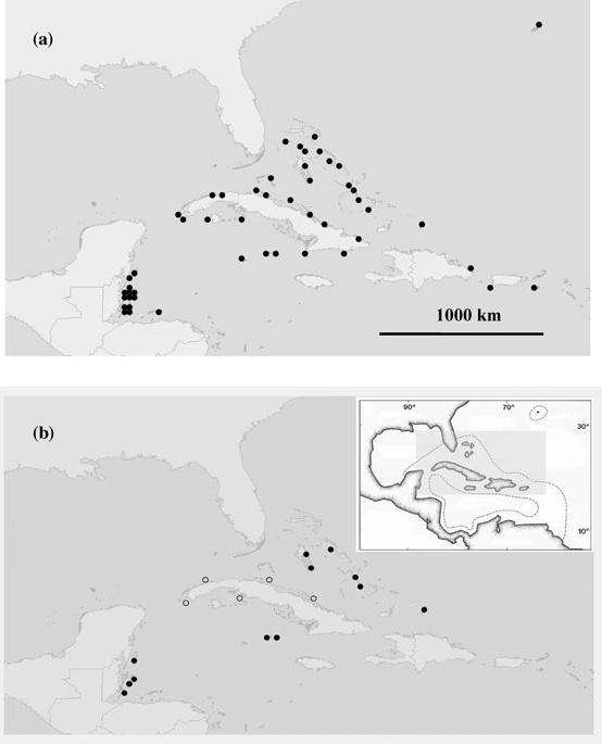 Figure 10. Maps showing locations of known Nassau grouper spawning aggregations both historically (a) and as of about 2007 (b) according to available information-not all sites have been validated.