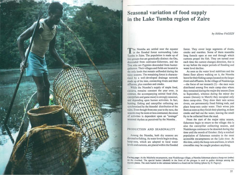 Seasonal variation of food supply in the Lake Tumba region of Zaire by Hetene PAGEzr The Ntomba are settled near the equator in the flooded forest surrounding Lake Tumba in Zaire.