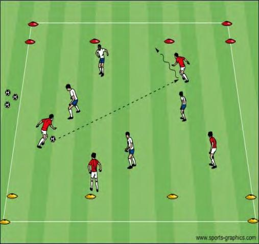 Coach: Concentrate on polishing the mechanics of passing and receiving as well as player s technical speed and individual/group shape.