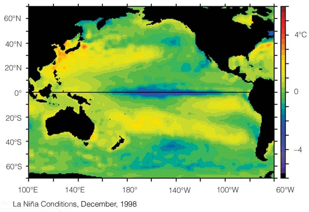 SST Anomalies During