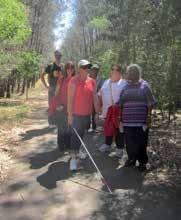 What we provide Heart Foundation Walking is a proven and sustainable framework for starting and operating walking groups in your community Cardiovascular disease: kills one Australian every 12