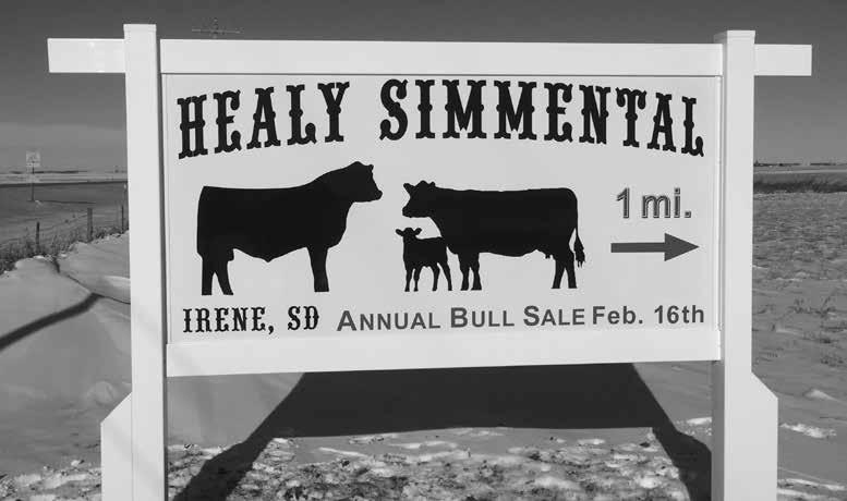 Annual Bull Sale Thursday, February 16, 2017 11 am
