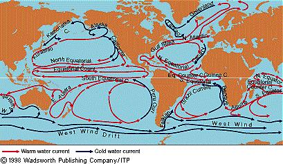 Wind Wind-drive driven ocean surface currents How fast? A few miles/hr (Gulf Stream off of Miami = 4.