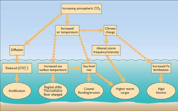 Climate Change (Continued) Climate warming will affect oceans and ocean life in diverse and complex ways. Every aspect of ocean chemistry, circulation, heat content.