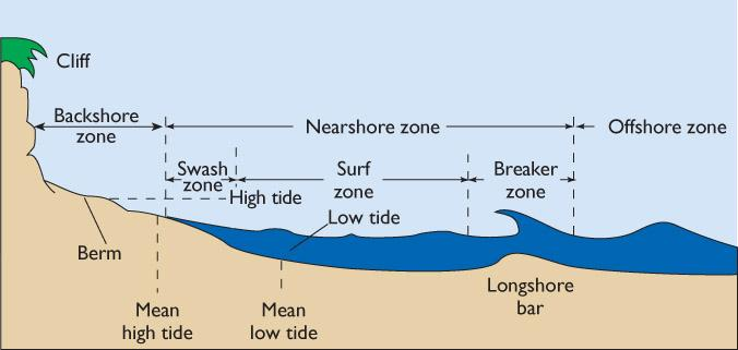 The Coastal Zone The berm, a prominent wave-deposited feature of most beaches, is an accumulation of sand having a flat top surface and a relatively steep