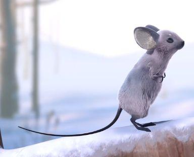 Costumes & Colour Mouse: Grey, long tail, larger ears, fluffy. Very cute.