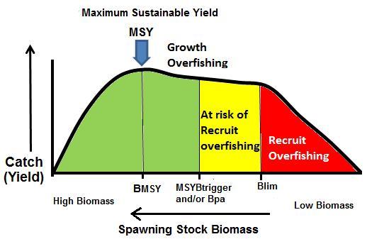 section in Figure 1. MSYBtrigger and Bpa are action points; when the SSB is below this level managers expect to take measures to reduce fishing mortality aiming for exploiting the stock at MSY.