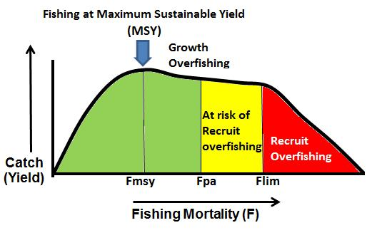 Figure 2 Schematic for Fishing Mortality reference points However, providing sufficient fish survive to become adults and spawn, they may still have the reproductive capacity to replace themselves.