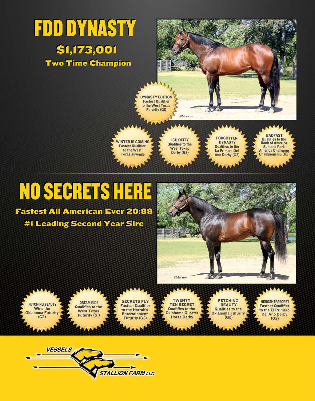 Sire of 2.6 Million In Earners Sire of Multiple Graded Stakes Qualifiers Owned by FDD DYNASTY SYNDICATE Limited number of 2013 season available Call The Farm Today! No.