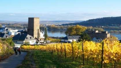 Take the gondola to Ehrenbreitstein Fortress or mingle with the happy wine drinking folk in the restaurants and bars.